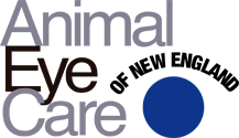 Animal Eye Care of New England logo